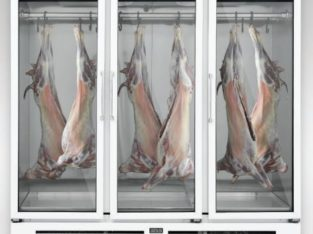 Meat Chiller three doors by Varioline Intercool Pakistan