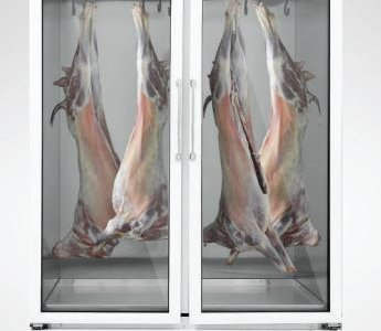 Meat Chiller two doors by Varioline Intercool Pakistan